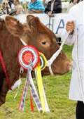 Keith Country Show success