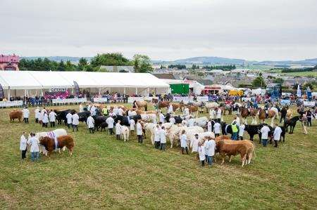The grand parade of champions at Keith Country Show. Picture: Daniel Forsyth.